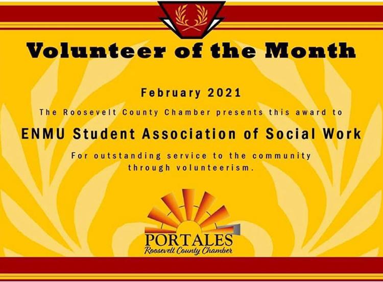 s a s w volunteer award