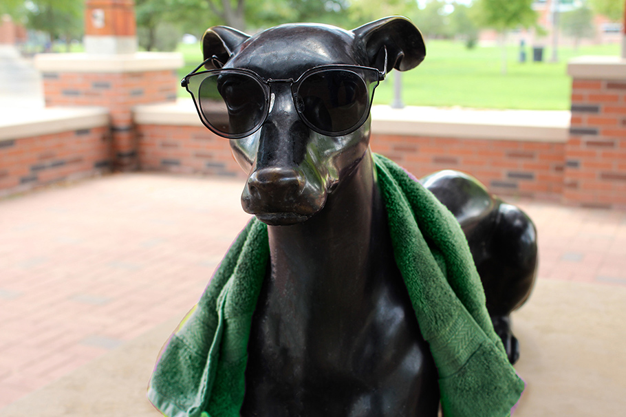 Greyhound statue with sunglasses and towel