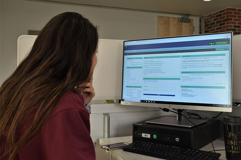 Student using website and portal
