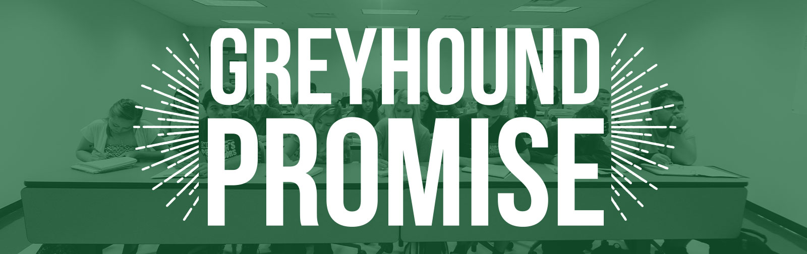 Greyhound Promise Banner